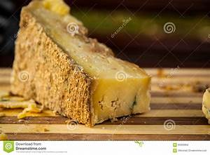 mold stock image cartoondealercom 31080157 With the cheese is old and moldy where is the bathroom