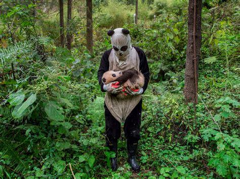 stunning images shortlisted  sony world photography