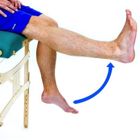 Long Arc Quad - Physical Therapy First - Baltimore ...