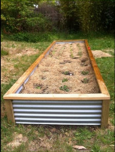 corrugated iron planter box copied from gumtree au