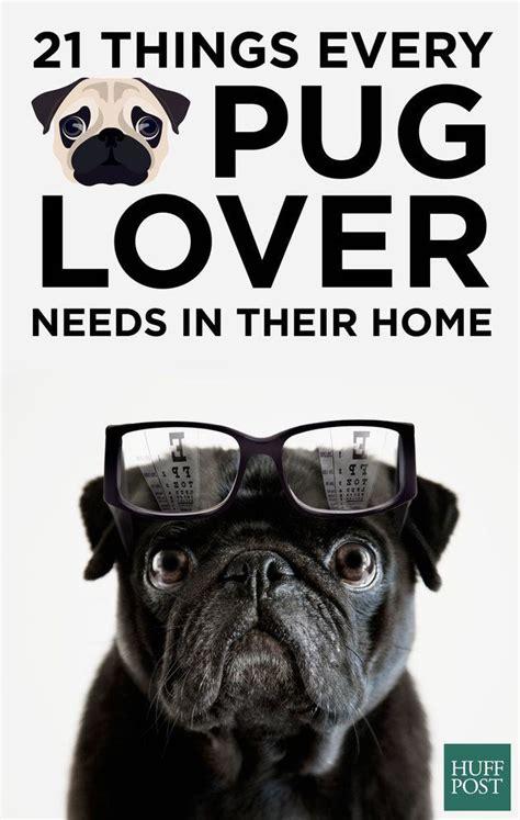 pug lover desperately    home