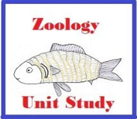 images  homeschool zoology  pinterest