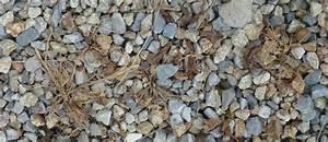 Désherbant Naturel Pour 600m2 : fabriquer son d sherbant naturel les bonnes id es jardin ~ Nature-et-papiers.com Idées de Décoration