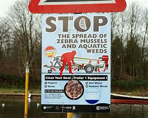 File Zebra Mussels Sign  Antrim - Geograph Org Uk - 1625378 Jpg