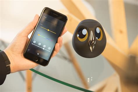 Product Of The Week An Interactive Owl Shaped Security by Product Of The Week An Interactive Owl Shaped Security