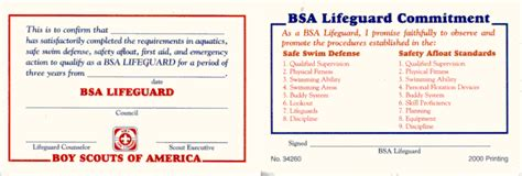 The guard card in california is the greatest door opener for security careers and opportunities on the entire west coast. HV/NY Venture Net - BSA Lifeguard Award