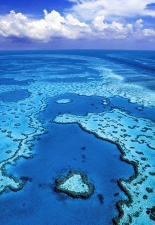 Heart Reef Queensland Australia