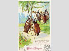 Historische Fröhliche Pfingsten Alte Postkarten