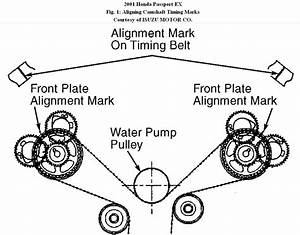Timing Belt  I Need Timing Mark Diagrams For 2001 Honda Passport