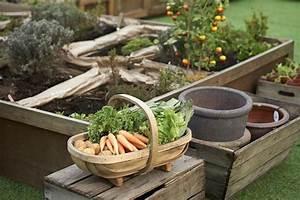 Jardiner Avec La Lune : jardiner avec la lune et ma triser le calendrier lunaire ~ Farleysfitness.com Idées de Décoration