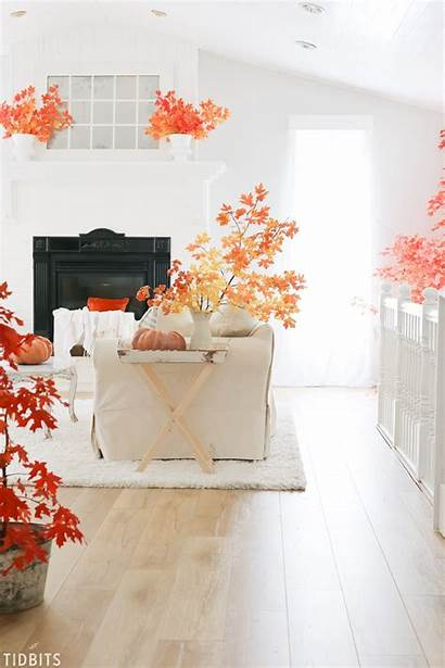 Fall Winter Trends Leaves Autumn Tidbits Colors