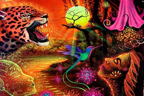 collection  ayahuasca documentaries movies  books