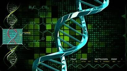 Male Female Genes Health Disease Dna