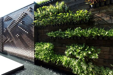 Vertical Garden Brisbane by Vertical Gardens In Brisbane Sydney Melbourne Wall