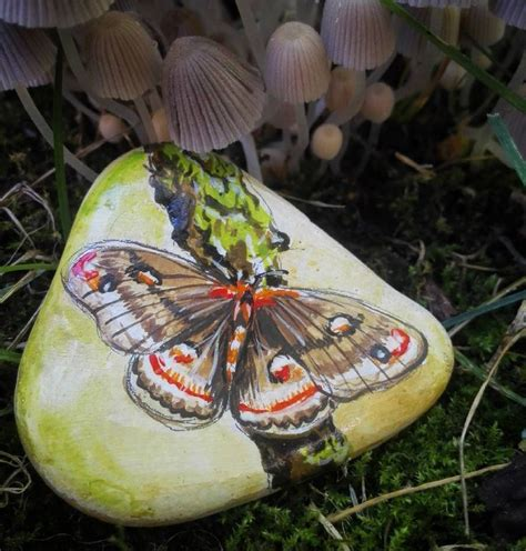 Butterfly And Stones by 1042 Best Pebbles And Stones Butterfly Images On