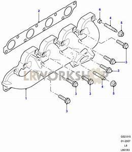 Exhaust Manifold - 2 4 Tdci