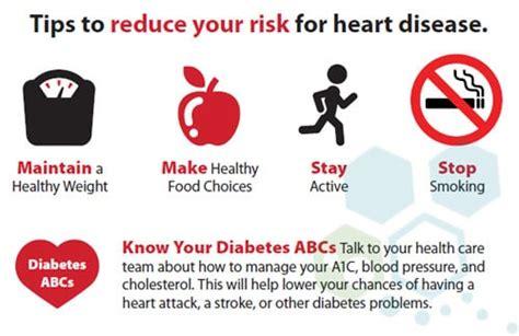 cardiovascular  blood circulatory system