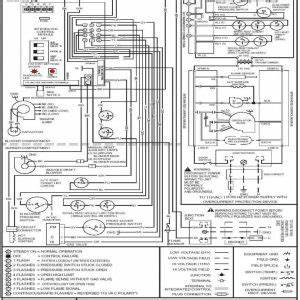 American Standard Thermostat Wiring Diagram 650. thermostat american  standard hvac manual to strangefox. trane xl624 thermostat z wave world. no  defrost in heating mode community forums. field wiring american standard  freedom 80A.2002-acura-tl-radio.info. All Rights Reserved.