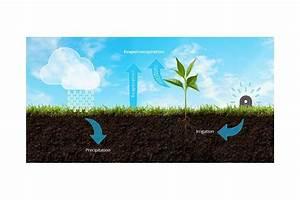 greeniq smart garden hub das nest fur den garten With katzennetz balkon mit smart garden bewässerung