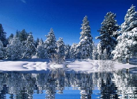 Animated Nature Wallpaper Desktop Gif - free snow nature and landscapes animated gifs