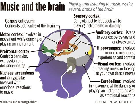 Music And The Brain (online Discussion #1)
