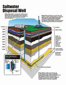 Intex Saltwater System Diagram