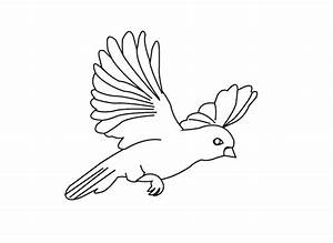 Bird Pages For Preschoolers Coloring Pages