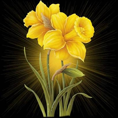 Yellow Flower Flowers Desicomments Flores Animated Preet