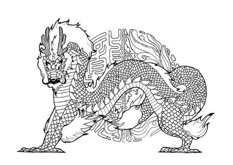 disegni dei draghi da colorare draghi 61749 draghi disegni da colorare per adulti