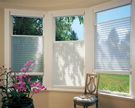 Blinds And Window Coverings by Up White Douglas Silhouette Blinds Were