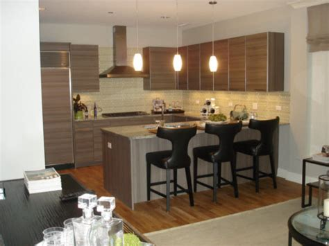 chicago luxury apartments  rent