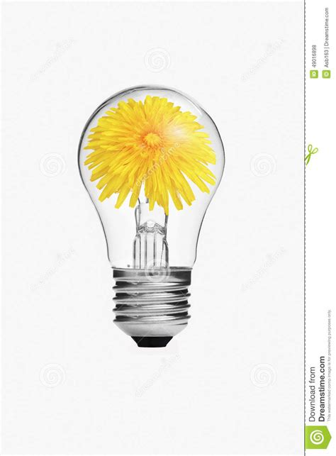 yellow flower inside the light bulb stock illustration
