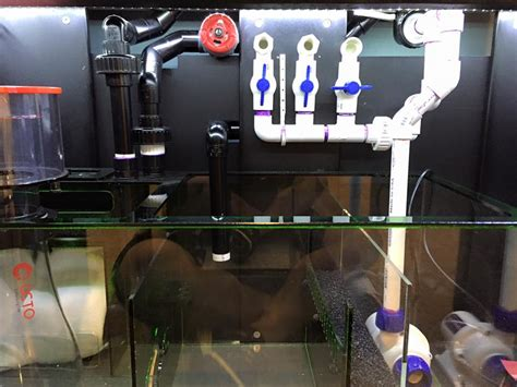 75 Gallon Reef Tank / High End Eqiupment Test Fill Only
