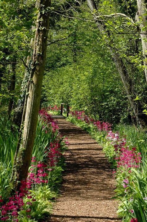 wooded garden fairhaven garden