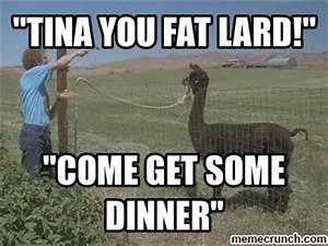 24 best Tina memes images on Pinterest | Funny memes ...