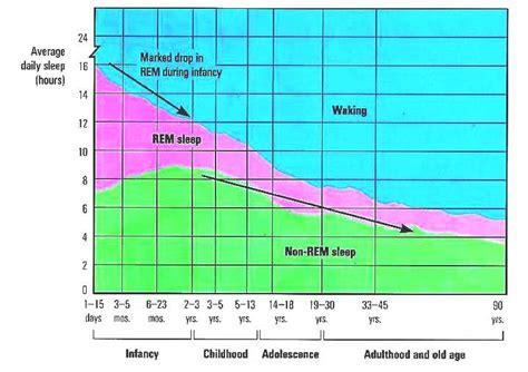average lifespan of a sleep and the lifespan