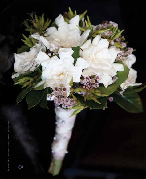 Southern New England Weddings by Lighthouse Media
