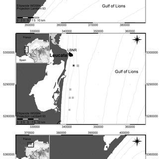 case study  artificial reefs   potential tool