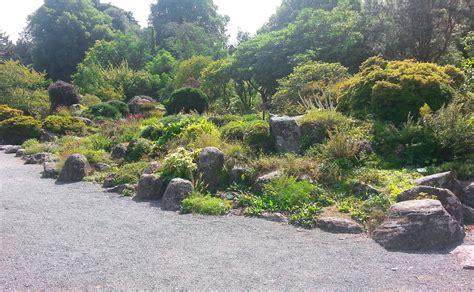 steingarten anlegen ein hauch von alpinem flair das