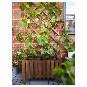 Treillis Pour Plantes Grimpantes : treillage en bois pour plantes grimpantes ~ Premium-room.com Idées de Décoration