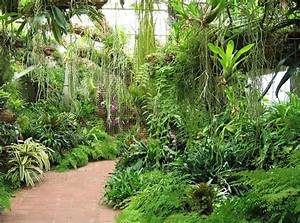 Tropical Plant Conservatory