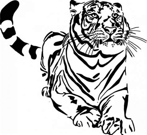 wild animals coloring books  coloring pages color