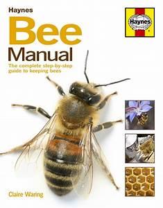 Haynes Bee Manual  The Complete Step
