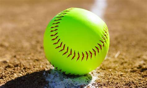 poll     usa high school softball player