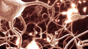 Inside The Brain  Concept Of Neurons And Nervous System   Bright Pink Color  Stock Footage Video