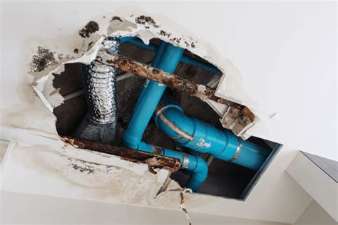 homeowners insurance cover internal damage
