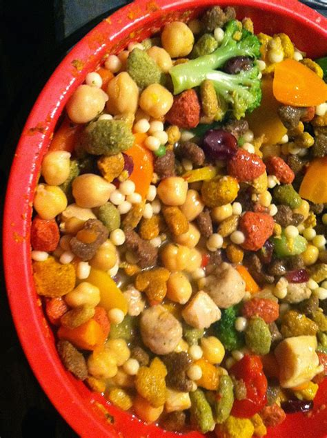 healthy homemade dog food recipes   favorite