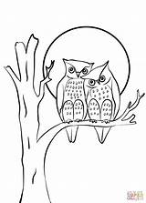 Coloring Couple Owls Printable Cartoon Owl Drawing Adult Heart Drawings Animal Animals Bird Creative Collegesportsmatchups sketch template