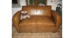 rénover canapé cuir rénover un canapé en cuir entretenir le revêtement