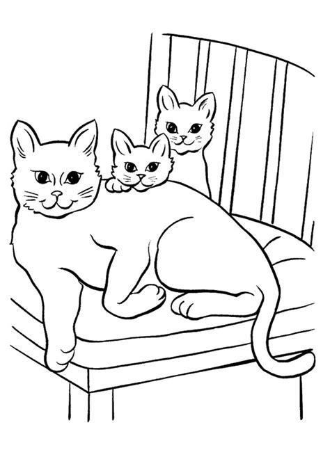 disegni da colorare cuccioli di disegni di gatti da colorare e stare gratis gatta con